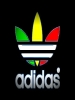 Adidas Green Yellow Red Logo