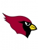 Arizona Cardinals 2