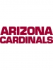 Arizona Cardinals 6