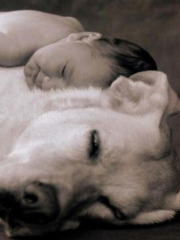 Baby and Dog Wallpaper