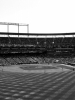 Black and White Baseball Stadium