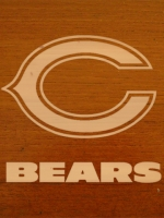 Chicago Bears 10