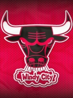 Chicago BullsJersey