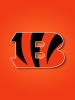 Cincinatti Bengals Orange