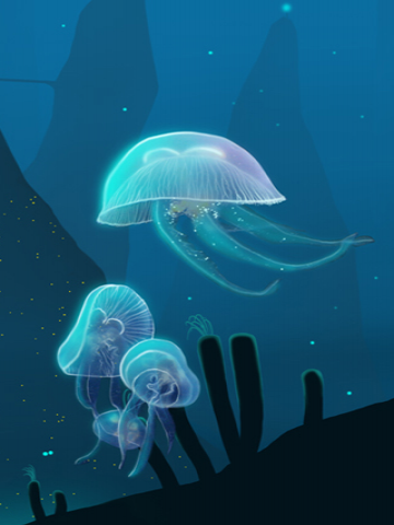 Clear Jellyfish Wallpaper