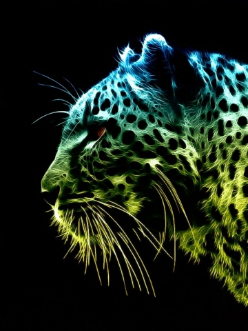Colorful Tiger Wallpaper | iPhone | Blackberry