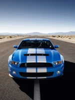 Electric Blue Mustang