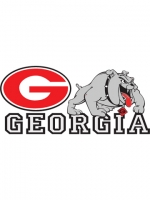 Georgia Bulldogs 2