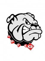 Georgia Bulldogs 6