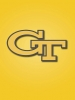 Georgia Tech Yellow