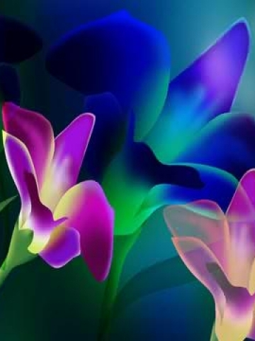 Glowing Purple and Blue Flowers Wallpaper