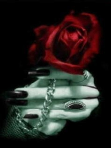 Gothic Rose Wallpaper