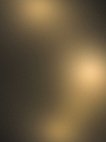 Light Bown and Gold Wallpaper