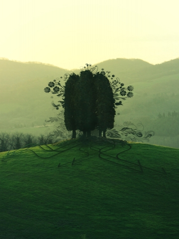 Lively Trees on a Hill Wallpaper