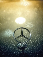 Mercedes Benz Logo Wet
