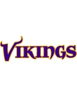Minnesota Vikings 5