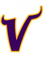 Minnesota Vikings 6