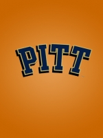Pittsburgh Panthers Orange