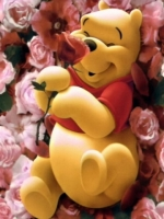 Pooh Bear on Roses