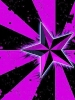 Purple Volcom Star