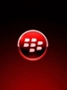 Red Blackberry Logo