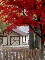 Red Tree Cottage