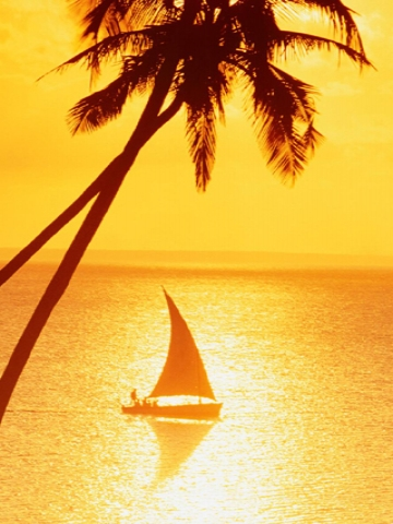 Sailboat at Sunset Wallpaper