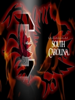 South Carolina Gamecocks 4