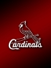 St LouisCardinals