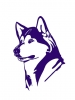 Washington Huskies 3