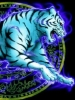 White Tiger Glowing Blue Outline