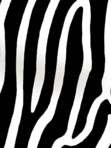 Zebra Print Black and White Wallpaper