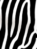 Zebra Print Black and White