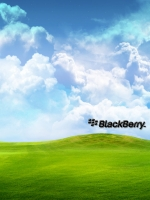 Blackberry Xp
