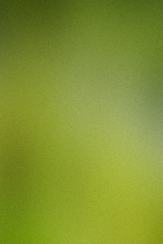 Olive Green Wallpaper IPhone